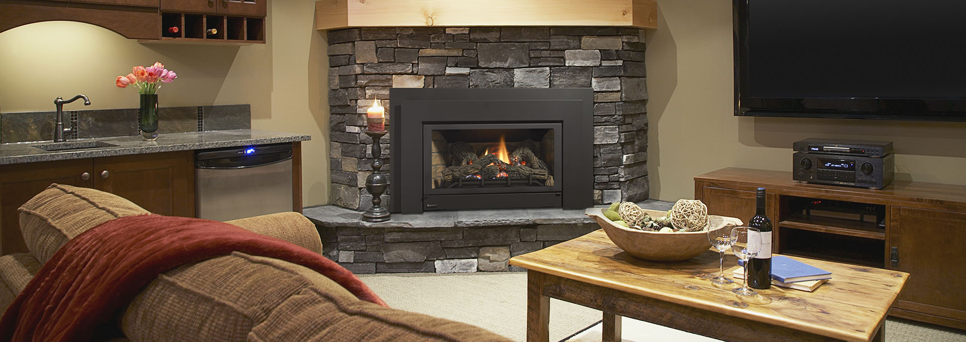 Energy E21 Small Gas Fireplace Insert Regency Fireplace Products