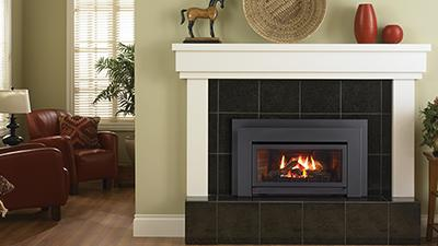 This compact Energy Gas Insert is perfect for heating smaller living areas.