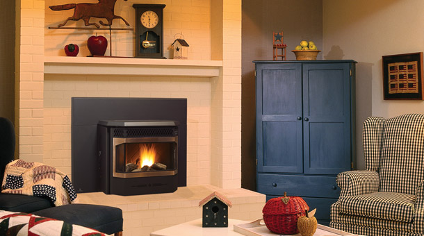 "Medium pellet insert that can fit into fireplace openings as low as 19.5"", it has the option of steel or brushed nickel door overlay."